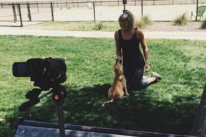Photo #1: Learn PROVEN Dog Training Techniques from a Master Dog Trainer