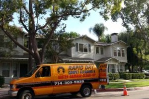 Photo #5: CARPET CLEANING & WATER DAMAGE
