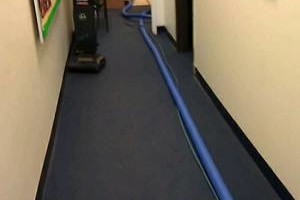 Photo #6: CARPET CLEANING & WATER DAMAGE