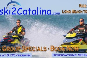 Photo #7: Seadoo to Catalina Island Adventure - Ride with the Dolphins