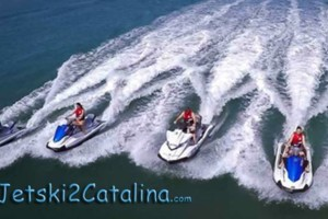 Photo #3: Seadoo to Catalina Island Adventure - Ride with the Dolphins