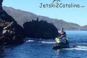 Photo #1: Seadoo to Catalina Island Adventure - Ride with the Dolphins