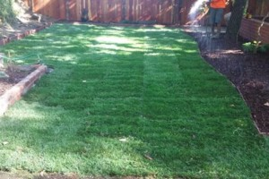 Photo #8: OC FINEST LANDSCAPE CONSTRUCTION