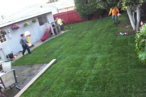 Photo #3: OC FINEST LANDSCAPE CONSTRUCTION