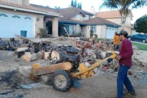Photo #4: Professional Coronado tree service