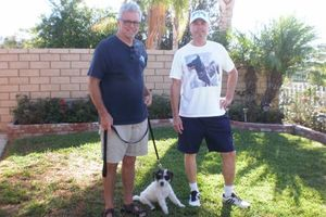 Photo #15: OC K-9 Services. Puppy Training, Human Trainingю 50%Discount!!