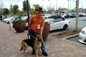 Photo #9: OC K-9 Services. Puppy Training, Human Trainingю 50%Discount!!
