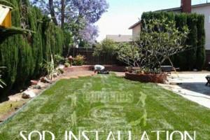 Photo #22: Yard Maintenance by Cardenas Gardening