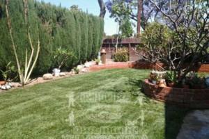 Photo #21: Yard Maintenance by Cardenas Gardening
