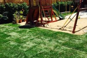 Photo #19: Yard Maintenance by Cardenas Gardening