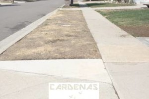 Photo #18: Yard Maintenance by Cardenas Gardening