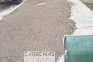 Photo #16: Yard Maintenance by Cardenas Gardening
