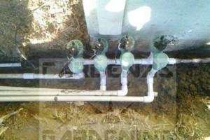 Photo #9: Yard Maintenance by Cardenas Gardening