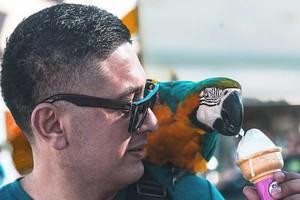 Photo #1: Free Photo-Shoot/Photography. Acting headshots, Business Etc