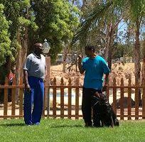 Photo #12: Resort Style Boarding and Daycare/ Topline K9 Services