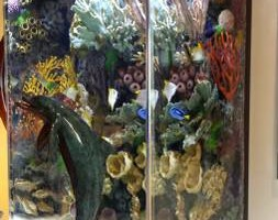 Photo #8: Fish Guy Russ. Fish tank cleaning / Aquarium maintenance
