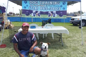 Photo #6: CERTIFIED DOG TRAINER