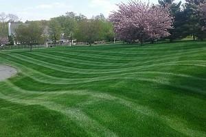 Photo #1: Lear's Lawn Service