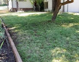 Photo #5: Landscape Maintanence (mowing, leaf blowing, weed eating)