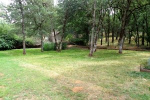 Photo #1: Landscape Maintanence (mowing, leaf blowing, weed eating)