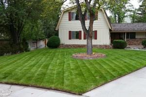 Photo #10: Lawn & Sprinkler Management