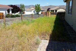Photo #4: Lawn & Sprinkler Management