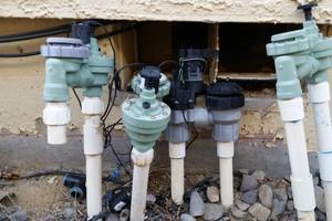 Photo #2: Lawn & Sprinkler Management