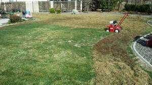 Photo #5: ANYTIME LAWN SERVICE + aerate and de-thatching