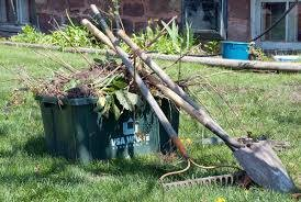 Photo #4: Yard clean up services - top quality work!