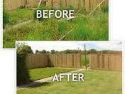 Photo #3: Yard clean up services - top quality work!