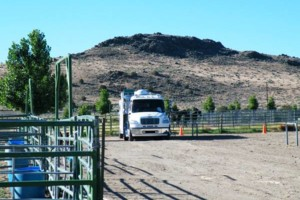 Photo #5: HORSE MOTEL - Horse travel, layovers, for Horse Hotel stalls boarding