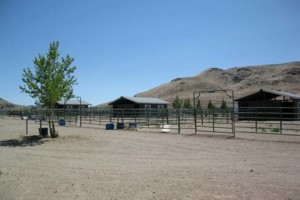 Photo #4: HORSE MOTEL - Horse travel, layovers, for Horse Hotel stalls boarding