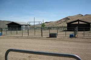 Photo #2: HORSE MOTEL - Horse travel, layovers, for Horse Hotel stalls boarding