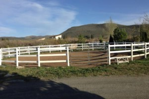 Photo #1: Horse boarding - $250 monthly per horse (+grass hay)