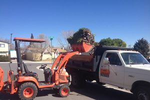 Photo #6: TRACTOR/DUMP TRUCK FOR HIRE REASONABLE RATES