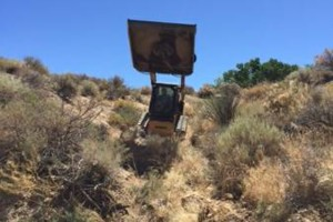 Photo #6: Brush Fire/Defensible Space Clearing