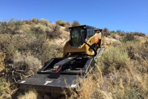 Photo #5: Brush Fire/Defensible Space Clearing