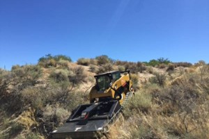 Photo #4: Brush Fire/Defensible Space Clearing
