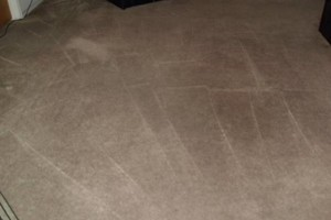 Photo #3: EDDIE'S CARPET CLEANING - 3 cuartos/rooms $50