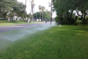 Photo #2: Sprinkler system installation +pressure washing