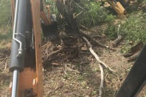 Photo #3: Brush Clearing and Backhoe Work
