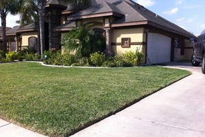 Photo #5: Andamos / Basic touch lawn care service