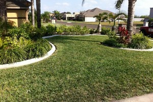Photo #4: Andamos / Basic touch lawn care service