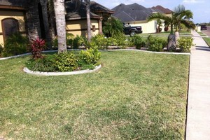 Photo #3: Andamos / Basic touch lawn care service