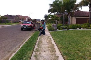 Photo #2: Andamos / Basic touch lawn care service