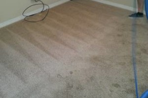 Photo #9: Carpet Cleaning / Upholstery by HydraTech Carpet & Disaster Services