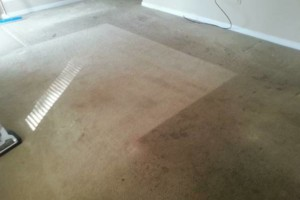 Photo #8: Carpet Cleaning / Upholstery by HydraTech Carpet & Disaster Services