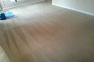 Photo #7: Carpet Cleaning / Upholstery by HydraTech Carpet & Disaster Services