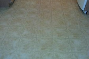 Photo #1: Carpet Cleaning / Upholstery by HydraTech Carpet & Disaster Services