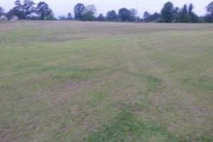 Photo #2: Dalmation lawn service/ we don't miss a spot